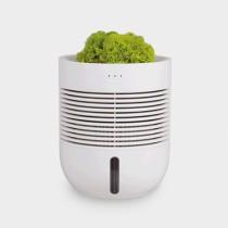 Healing Pot Humidifier [SU:P]